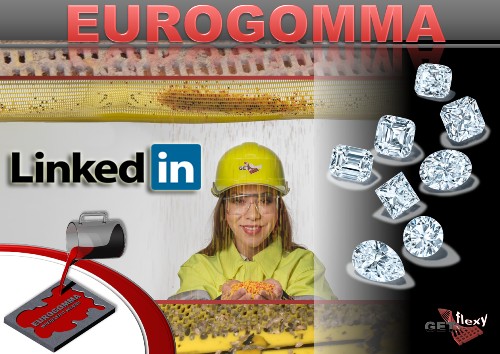 Eurogomma celebrates the new Linkedin profile